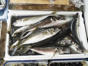 魚の臭み消し_スパイスのガネーシャ